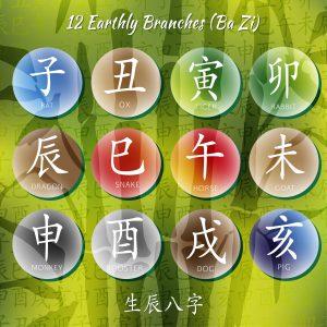 Chinese Astrology Ba Zi